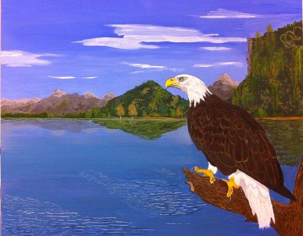 Over all I survey-bald-eagle.jpg