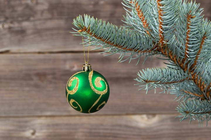 How Will You Be Spending Christmas This Year?-charitable-lge.jpg