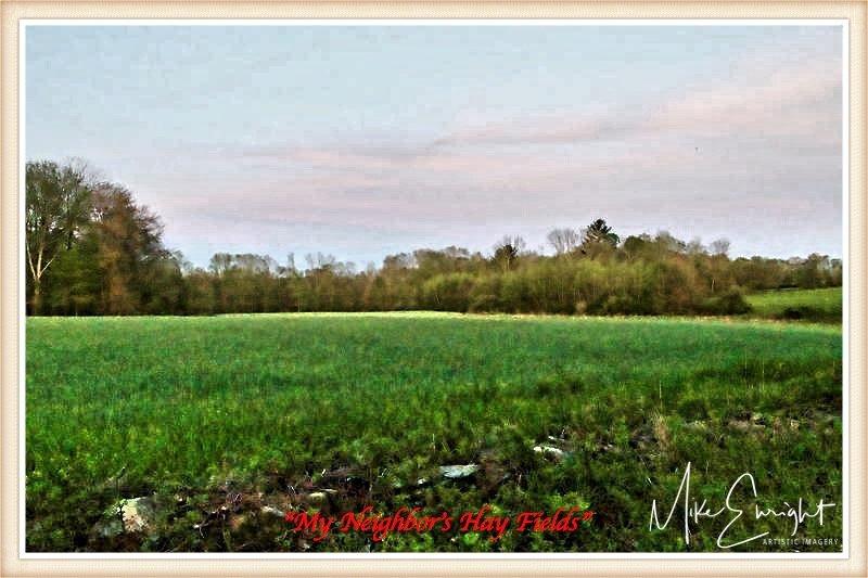 """""""My Neighbor's Hay Fields""""-dsc04963-2resized_fotor.jpg"""