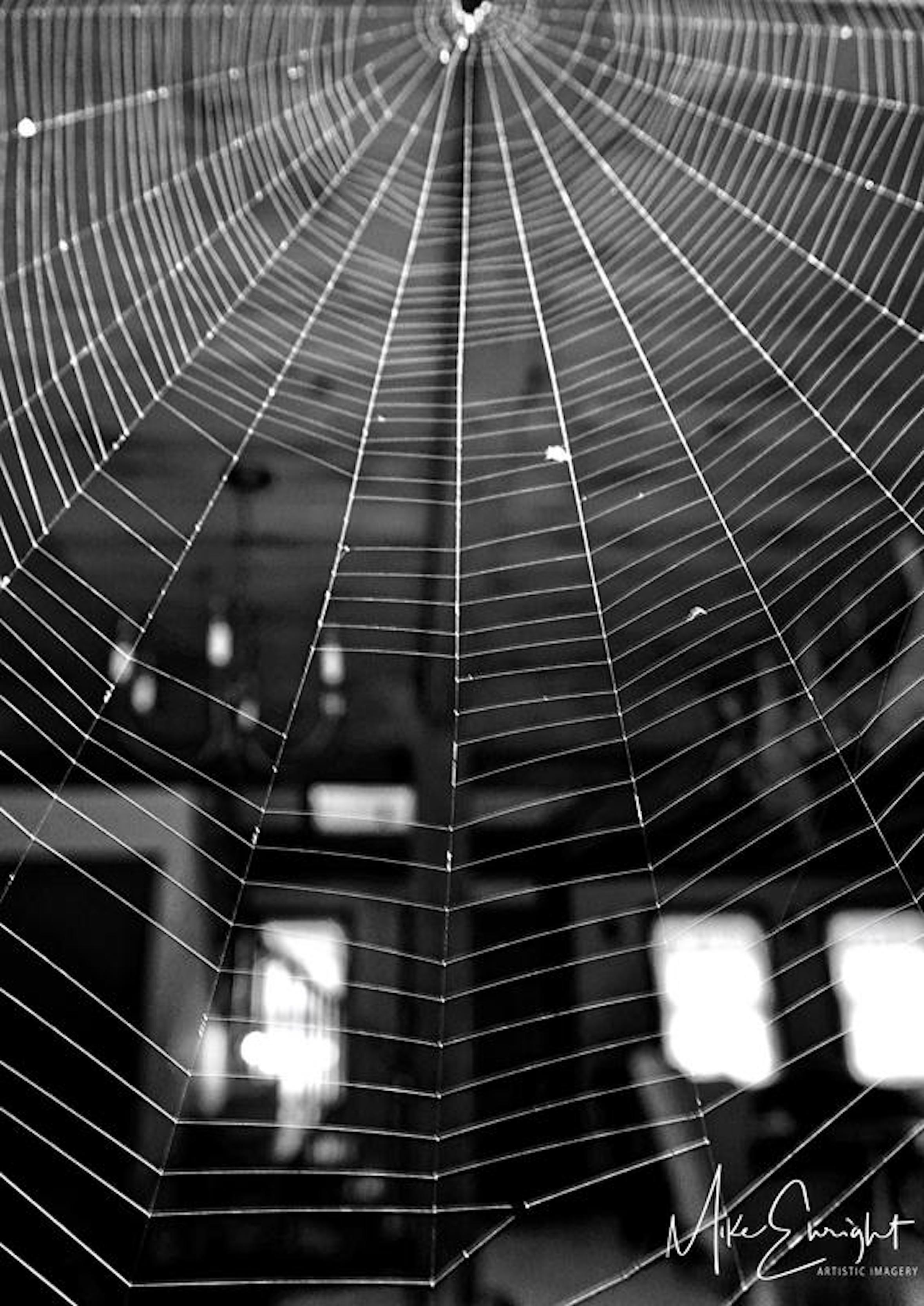 The non-conformist-dsc09408_fotor-arachnitecture-1resized.jpg