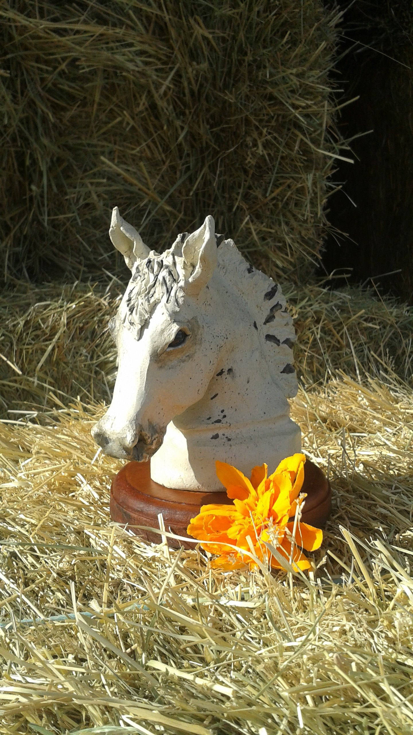 Horse and livestock clay sculpture-grey_area.jpg