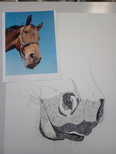 Horse WIP!-kel2pe.jpg