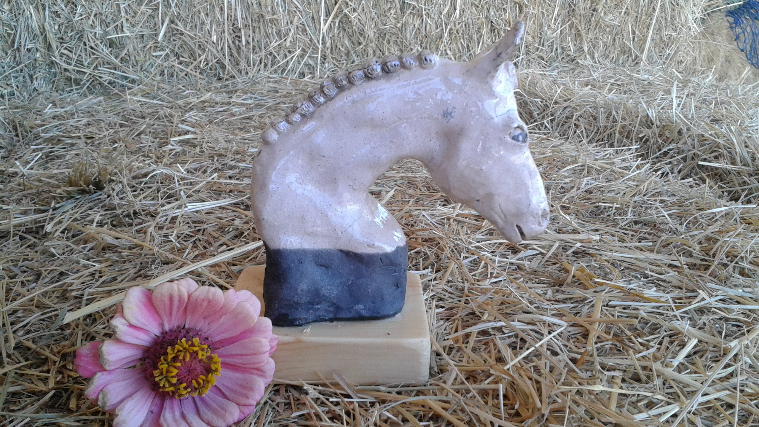 Horse and livestock clay sculpture-show-ready-2.jpg